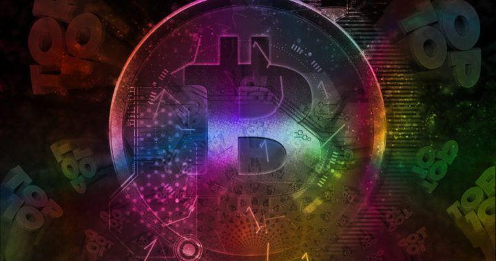 hodler, top10, top, bitcoin, hodl, btc, krypto, hodlovat, hodleři
