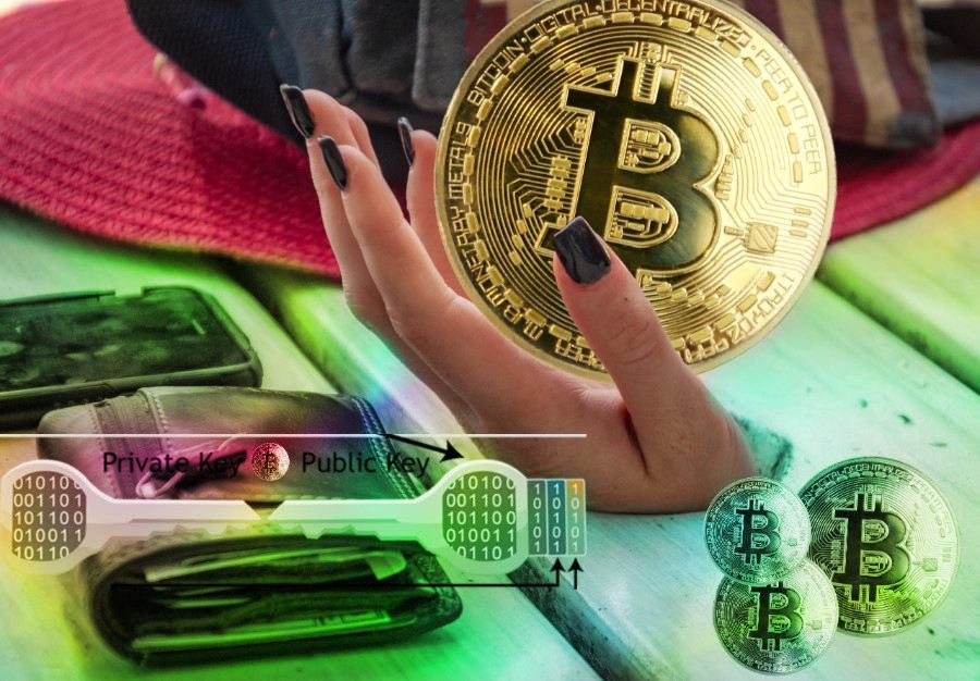 bitcoin, peněženka, veřejná adresa, seed, private key, soukromý klíč, jak funguje bitcoin, peněženka