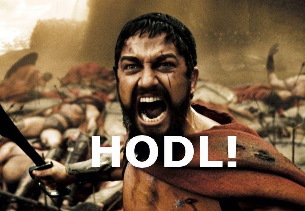 HODL, hold, hodler, kryptohodler, HODL!, kryptoměny, Bitcoin