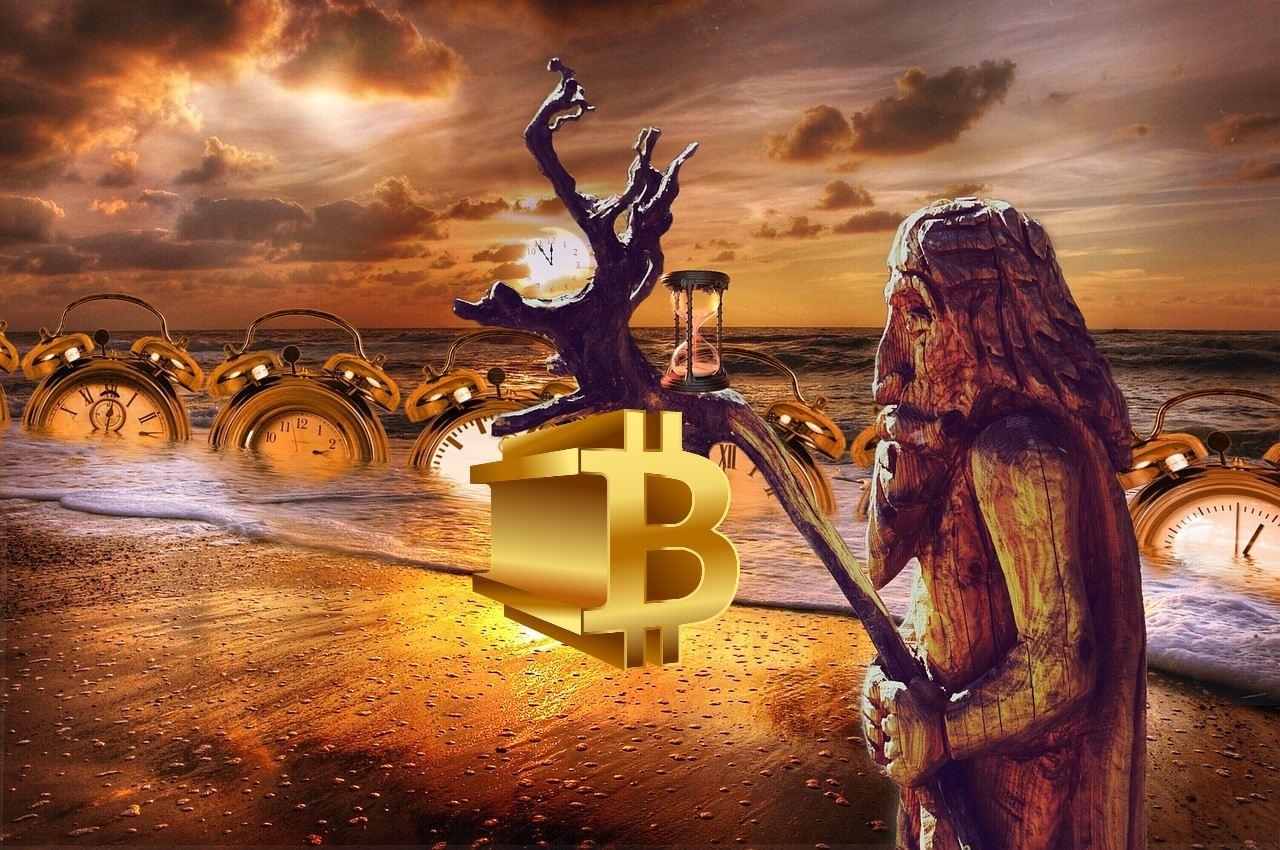 bitcoin, kryptomarket, hodler, rybář, altcoinovou, altcoiny, sezóna, market, čas, pláž