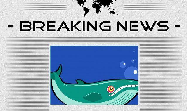 news, novinky, krypto, kryptoměny, bitcoin, velryba, veleryba, whale, transakce, bitcoin, aktualita, zpráva, čerstvě, aktuálně, breaking,