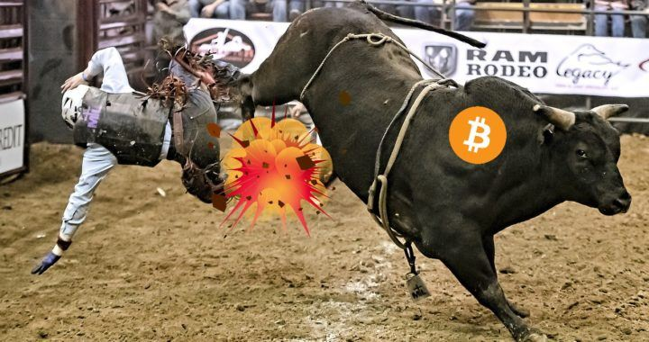 Bull, trh, bitcoin, PlanB, news, krypto, analytik, bull run, plan B,