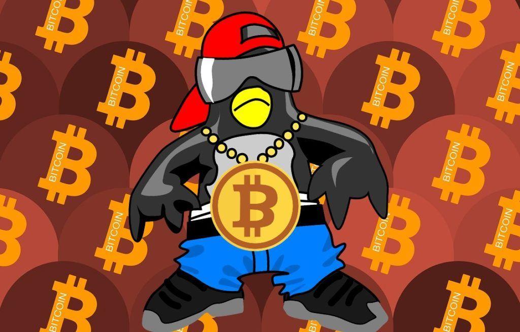 Hodleři, Bitcoin, tučňák, hodl, hodler, kryptoholer, news, novinky, thug life, boss, btc