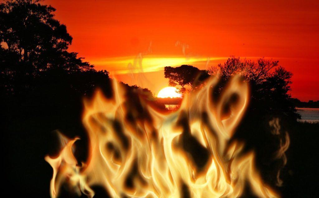 Amazonie, oheň, dar, darovat, pomoc, kryptoměny, dát, přispět, deštný prales