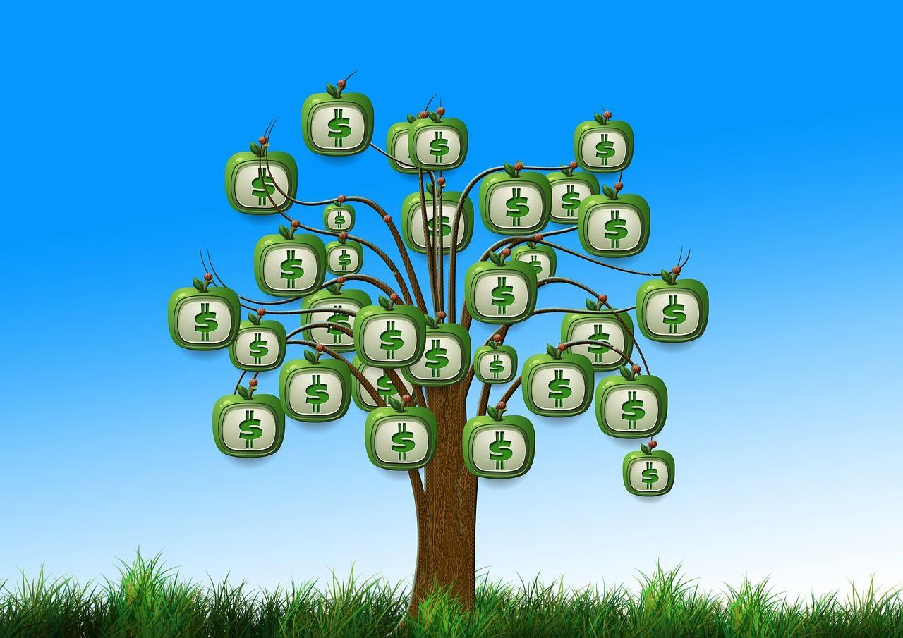 strom, peníze, bankovky, money, růst