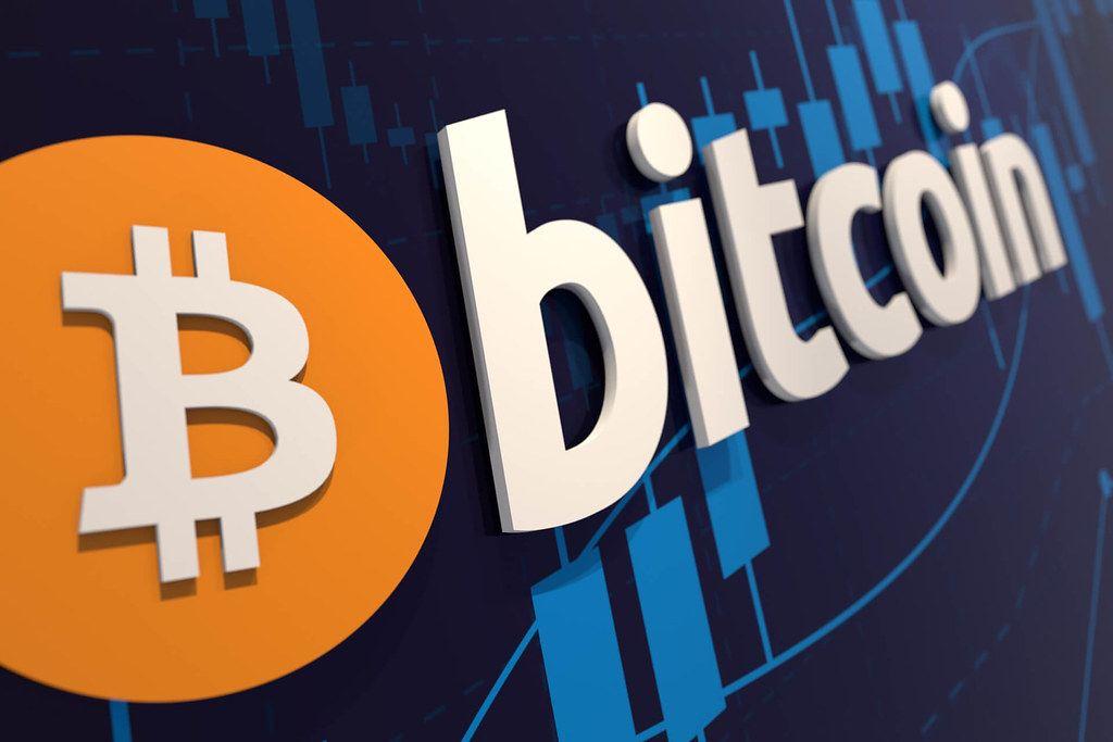 HODL, hodlerka, Bitcoin, učí, lidi, ekonomiku, trading, investování