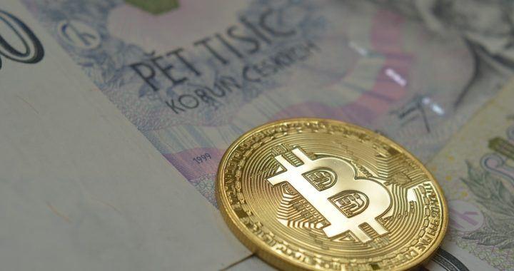 zákaz, kryptoměn, bitcoin, sppn, Hodler