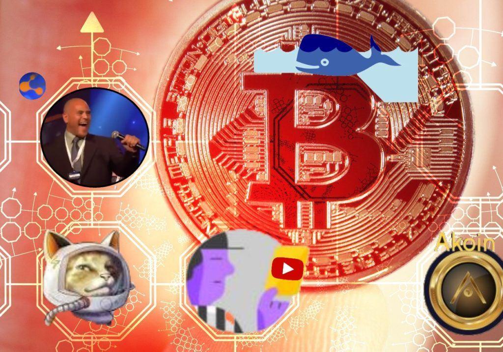 Kryptozprávy, bitconnect, Hodlonaut, kryptoměsto