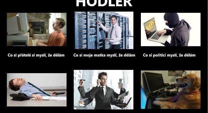 Just Hodl, meme