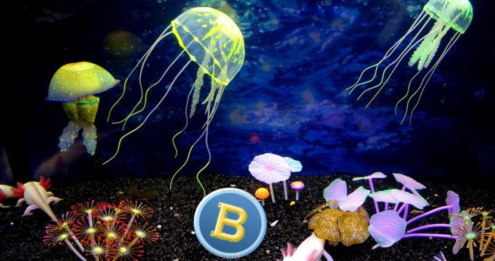 Bitcoin, BTC, dole, pád, propad, odpůrci, podpořský svět, moře, krypto