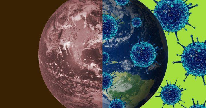 koronavirus, covid-19, sppn, svět, virus, pandemie, zprávy, novinky, btc, krize, bezpečnost