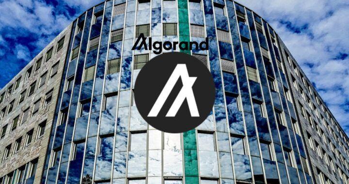 Algorand, algo, kryptoměna, co, jak, altcoin, smart contract