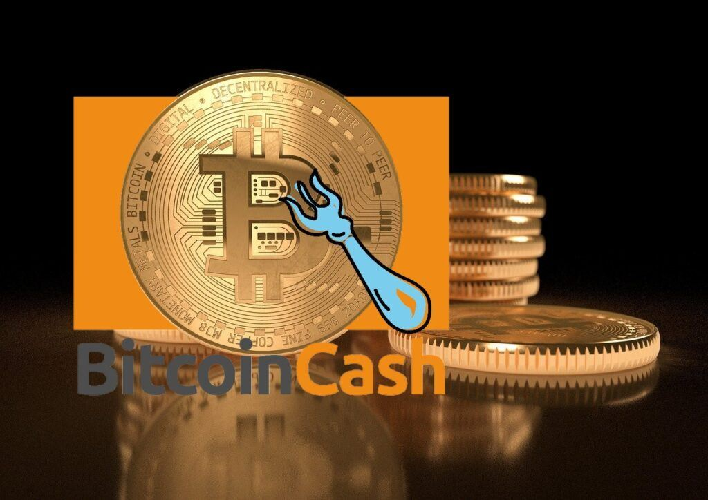 Bitcoin Cash, ver, fork, bch, ver, roger ver, hard fork, bcash