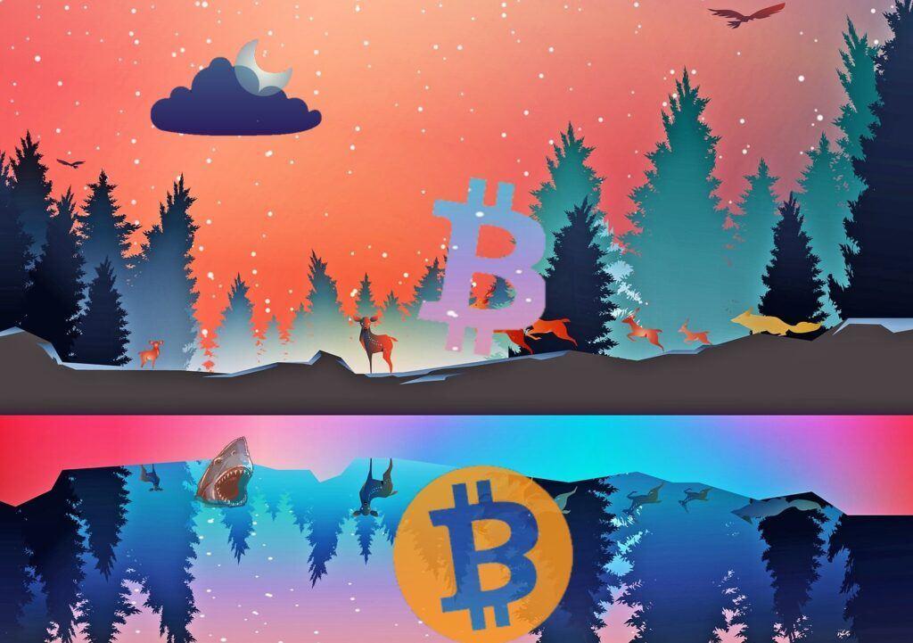 bitcoin, fantasy, btc, bull market, moon, logo, lake, cena, kryptomarket