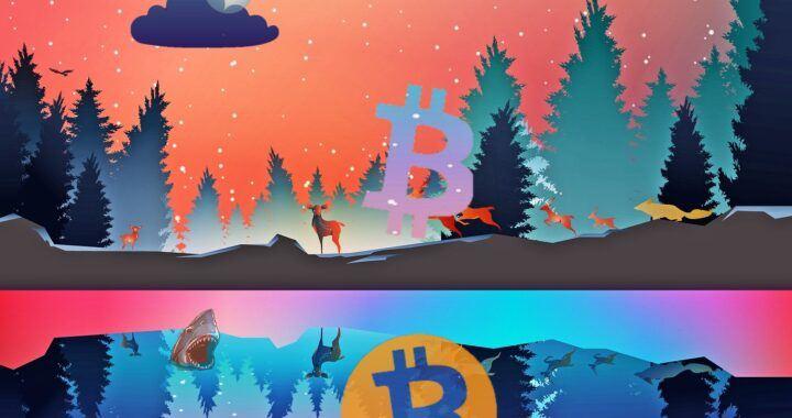 bitcoin, fantasy, btc, 300 tisíc, bull market, moon, logo, lake, cena, kryptomarket