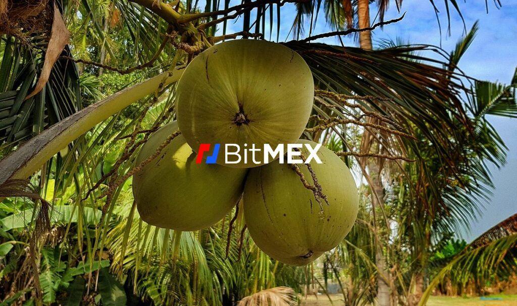 Kokosy, obvinění, burzy, BitMEX, Arthur Hayes, žaloba cftc, burza, bitmex