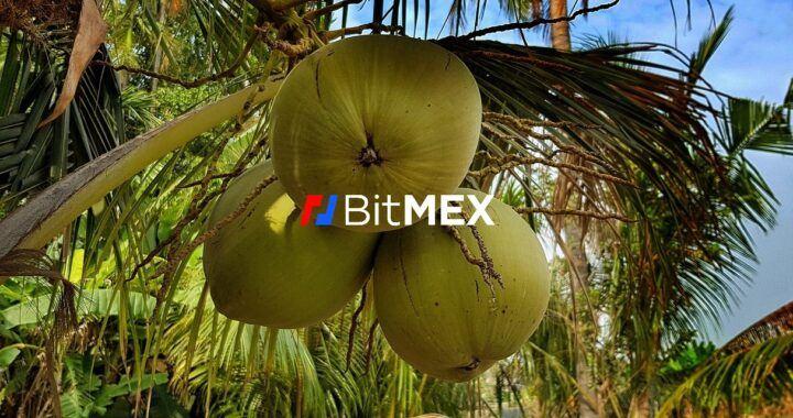 Kokosy, Arthur Hayes, obvinění, burzy, BitMEX, Arthur Hayes, žaloba cftc, burza, bitmex