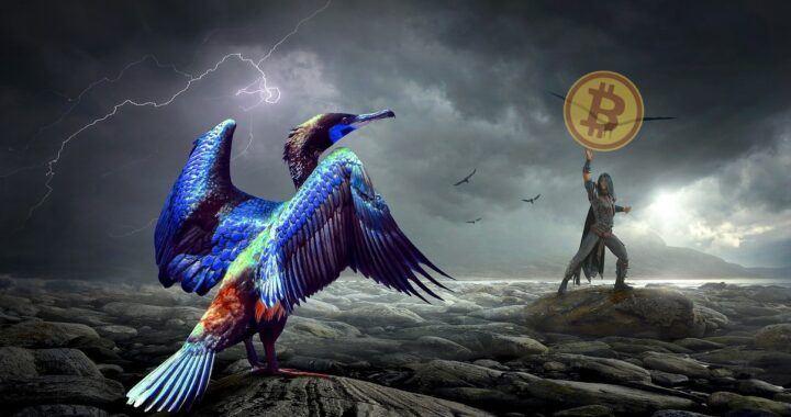 Bitcoin, phoenix, fantasy, btc, dark,
