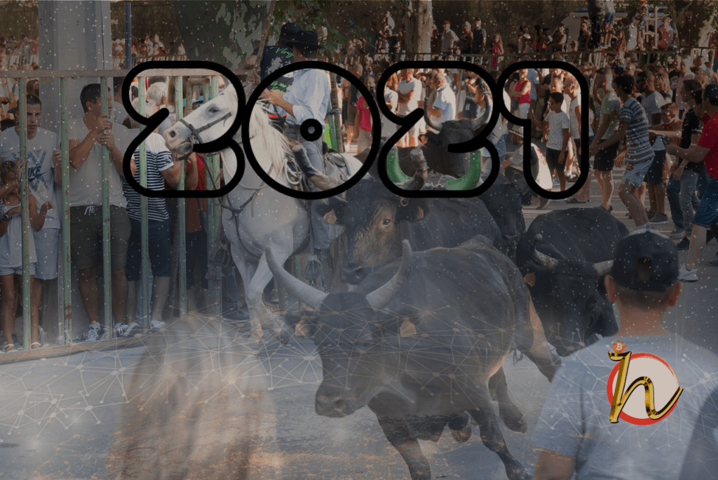 bull run, 2021, býčí, market, býk, bull, trh, kryptomarket, růst, bullish