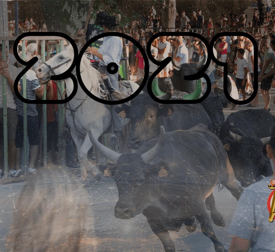 bull run, 2021, býčí, market, býk, bull, trh, kryptomarket, růst, bullish, kryptokomunitu