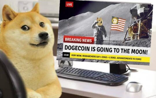 doge, moon, dogecoin, spacex